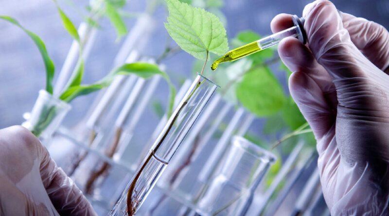 Biotecnología puede contribuir de forma importante