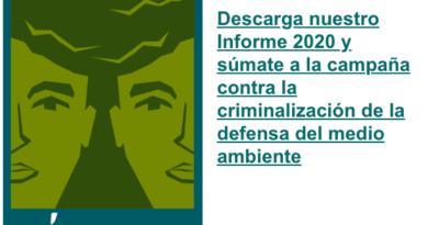 Continúa tendencia a la alza de agresiones contra personas defensoras del medio ambiente durante 2020